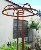 Rosenschirm Umbrella