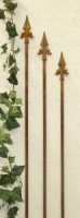 Rosenstab Set THREE BOURBONS